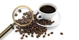Cafe e o aumento na expectativa de vida