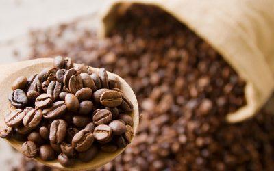 Os melhores cafés do mundo