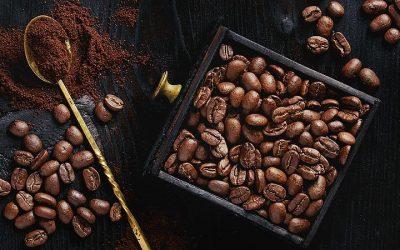 O café é muito amigo do meio ambiente