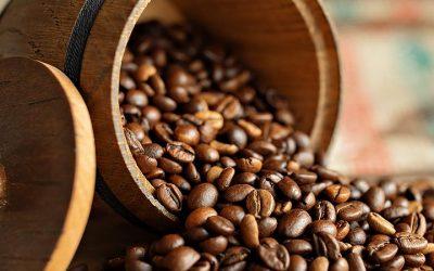 Benefícios da colheita mecanizada para os grãos de café